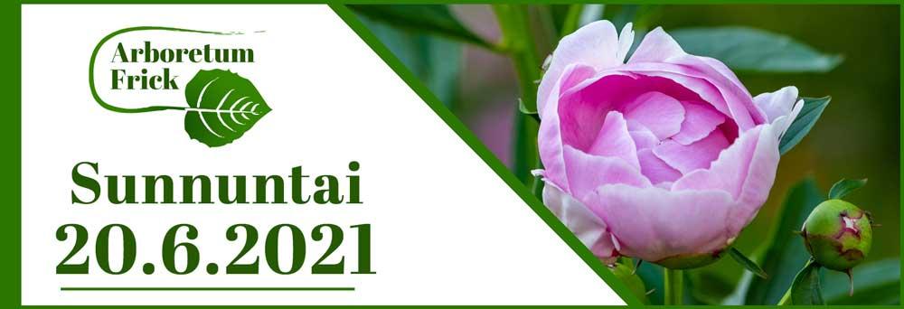 20.6.2021 Sunnuntai